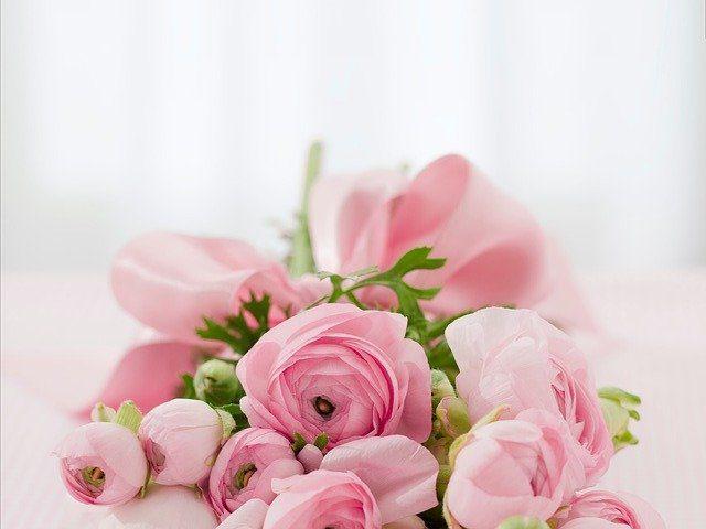 O uso das Flores na Magia e na Bruxaria - Rosas